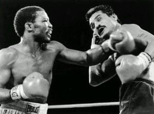 wpid-boxer-1.jpg